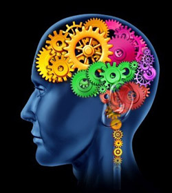 Your mind is your most powerful tool in weight loss. It influences every single process in the body including your fat storage hormones.